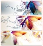 Комплект вектора флористических предпосылок для дизайна Стоковые Изображения RF