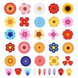 Комплект вектора цветков и лепестков Стоковые Фото