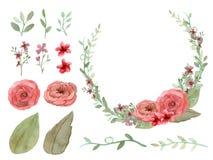 Комплект вектора цветков и листьев Стоковая Фотография RF