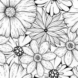 Комплект вектора цветков нарисованных рукой бесцветных и лист разветвляют Иллюстрация на сером цвете Стоковое Изображение