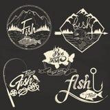 Комплект вектора ярлыков клуба рыбной ловли, элементов дизайна Стоковые Фото
