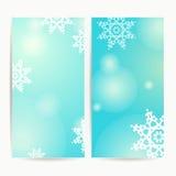 Комплект 2 вертикальных знамен рождества праздников Иллюстрация вектора