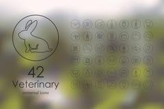Комплект ветеринарных значков Стоковая Фотография RF