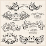Комплект винтажных викторианских орнаментов Wedding конструкция Стоковое фото RF