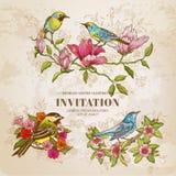 Комплект винтажных цветков и птиц иллюстрация вектора