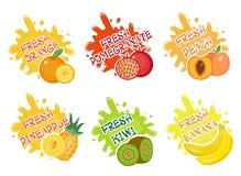 Комплект выплеска плодоовощей ярлыков Плодоовощ брызгает, падает собрание эмблемы и помарки также вектор иллюстрации притяжки cor Стоковые Фото