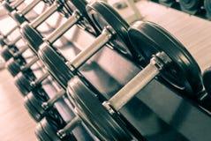 Комплект гантелей веса несъемной нагрузки Стоковые Фото