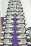 Комплект гантели металла отдыхает в ряд на поддержке Стоковое Изображение RF