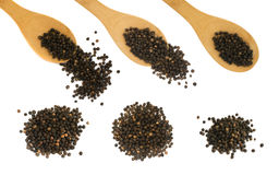 Комплект горячих изолированных семян черного перца Стоковые Изображения RF