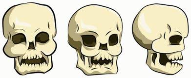комплект головы косточки Стоковая Фотография RF