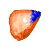 Комплект голубой краски, чернил, grunge, пакостных ходов щетки Крыла бабочки Стоковое Изображение