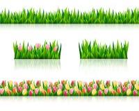 Комплект границ с свежей зеленой травой Стоковые Фотографии RF
