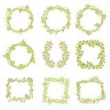 комплект графика элементов конструкции флористический Стоковая Фотография