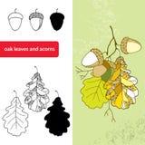 Комплект декоративных листьев и жолудей дуба бесплатная иллюстрация