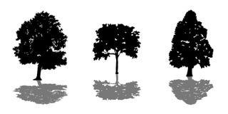 Комплект дерева черных силуэтов с тенью Стоковое Изображение RF