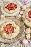 Комплект деревенских пирогов и меренг плодоовощ Стоковые Изображения RF
