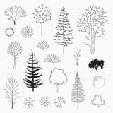 Комплект деревьев конспекта вектора, линия дизайн Стоковая Фотография