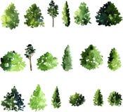 Комплект деревьев рисуя акварелью Стоковая Фотография