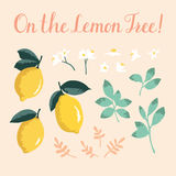 Комплект лета вектора при лимоны и цветки изолированные на предпосылке Стоковые Фото