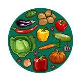 Комплект еды - овощей в круге Иллюстрация пиксела Изолированное изображение Стоковая Фотография RF