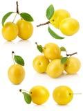 Комплект желтых слив вишни изолированных на белой предпосылке Стоковое фото RF