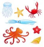 Животные моря Стоковое Фото