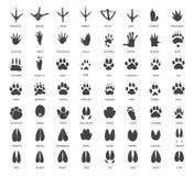 Комплект животных следов иллюстрация штока