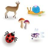 Комплект живых существ иллюстрация штока