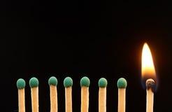 Комплект 7 зеленого и горящих деревянных спичек одного Стоковое Изображение