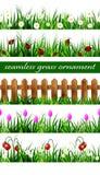 Комплект зеленой травы безшовный Стоковое Фото