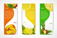 Комплект знамени тропических плодоовощей вертикальный Стоковое Изображение RF
