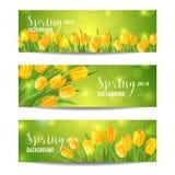 Комплект знамени цветка весны Стоковая Фотография