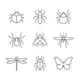 Комплект значка вектора насекомого простой Стоковые Фото