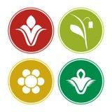 Комплект значка цветка Стоковые Изображения
