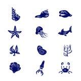 Комплект значка элементов морской флоры и фауны Стоковые Изображения RF