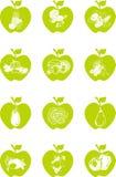 Комплект значка Яблока Стоковое фото RF