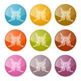 Комплект значков бабочек вектора красочный Стоковое Изображение