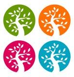 Комплект значков красочного дерева сезона смелейших Стоковая Фотография
