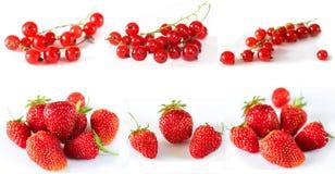 Комплект зрелых красных ягод Стоковое Изображение