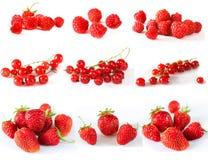 Комплект зрелых красных ягод Стоковое Изображение RF