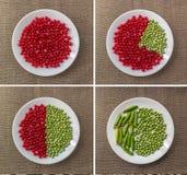 Комплект диаграмм красной смородины и горохов Стоковое Фото