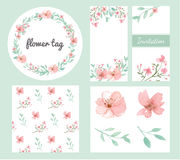 Комплект дизайна цветков и листьев Стоковые Изображения RF
