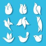 Комплект изображений птиц Стоковые Фотографии RF