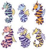 Комплект искусства зажима вектора морских коньков шаржа Стоковое Изображение