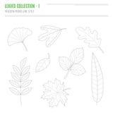 Комплект листьев в современном, линии стиля Стоковая Фотография