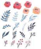 Комплект листьев красных роз, сини и черноты акварели иллюстрация вектора