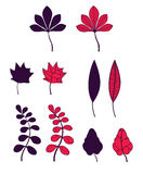 Комплект листьев осени Стоковые Изображения RF