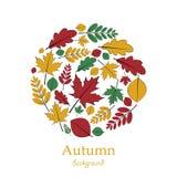 Комплект листьев осени Стоковая Фотография