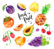 Комплект иллюстрации акварели красочный свежих фруктов иллюстрация штока