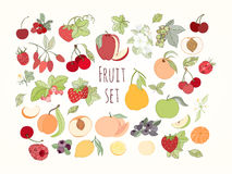 Комплект иллюстрации вектора плодоовощей и ягод Стоковая Фотография RF